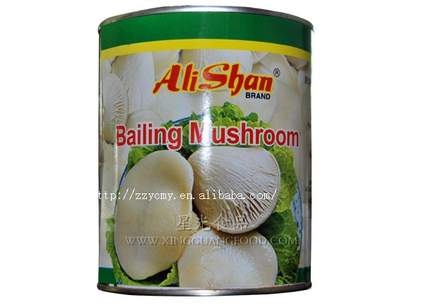 All Types Of Canned Abalone Mushroom Price