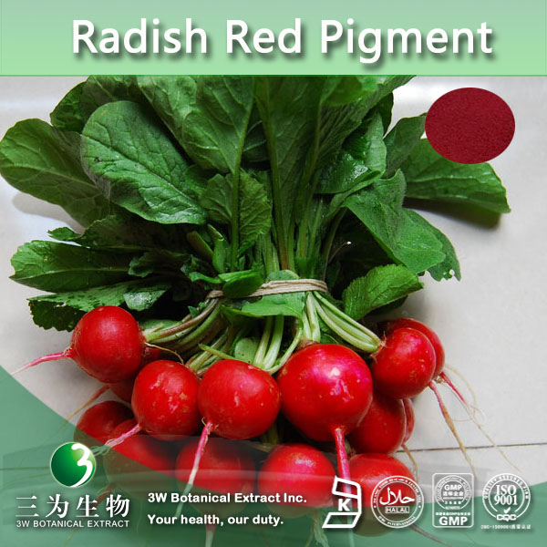 100% Natural Food Coloring Radish Red Pigment,Radish Red Color ...