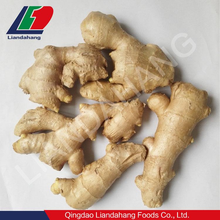 認定ギャップ/HACCP 新鮮な野菜輸入シンガポールで、新鮮なタイ野菜、新鮮な野菜輸入ロンドン