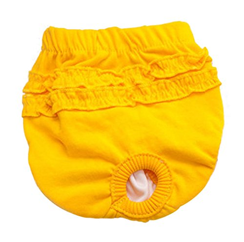 Axchongery Dog Diaper, Brief Bitch In Season Pants Small Pet Pants for Girl Female
