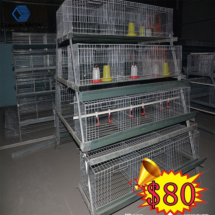 High Quality Automatic Broiler Chicken Cages Of 4 Floors