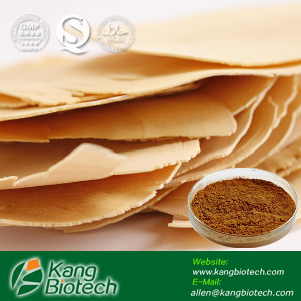 Herb Medicine Tongkat Ali Extract Powder 200:1 from GMP Manufacturer