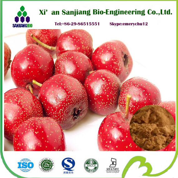 pure natural haw extract hawthorn berry extract haw juice powder