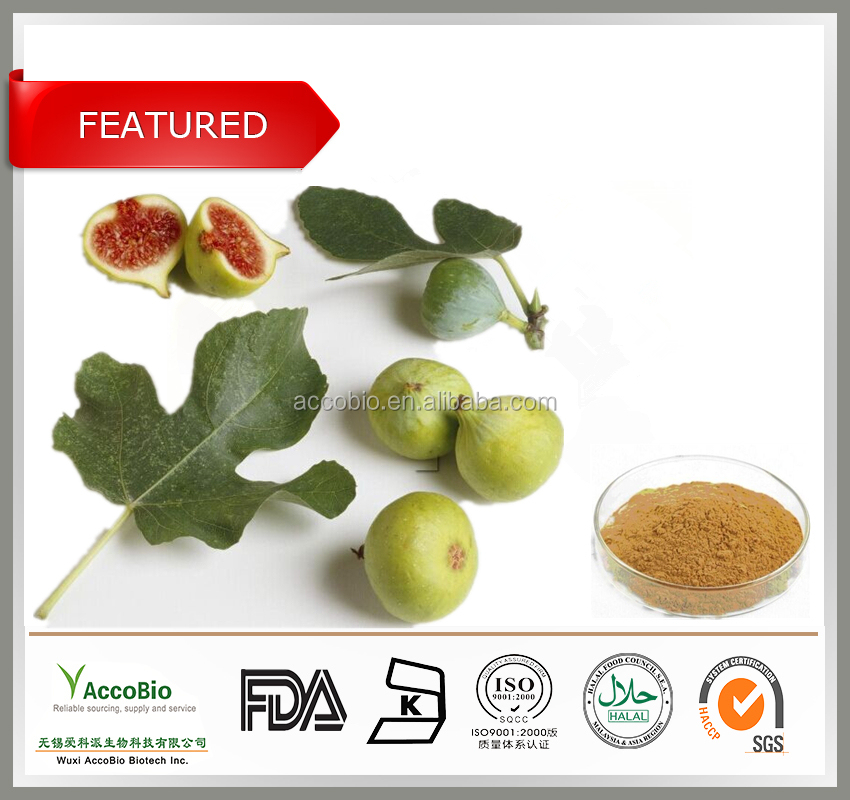 New products! top quality fig leaf extract, bulk fig powder with free sample, best price fig extract