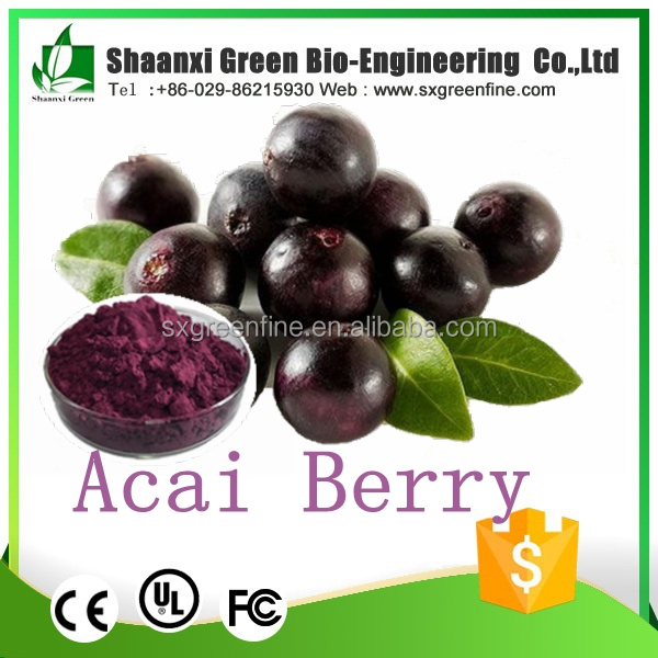 china wholesale hot new products for 2017 fruit powder acai berry wholesale