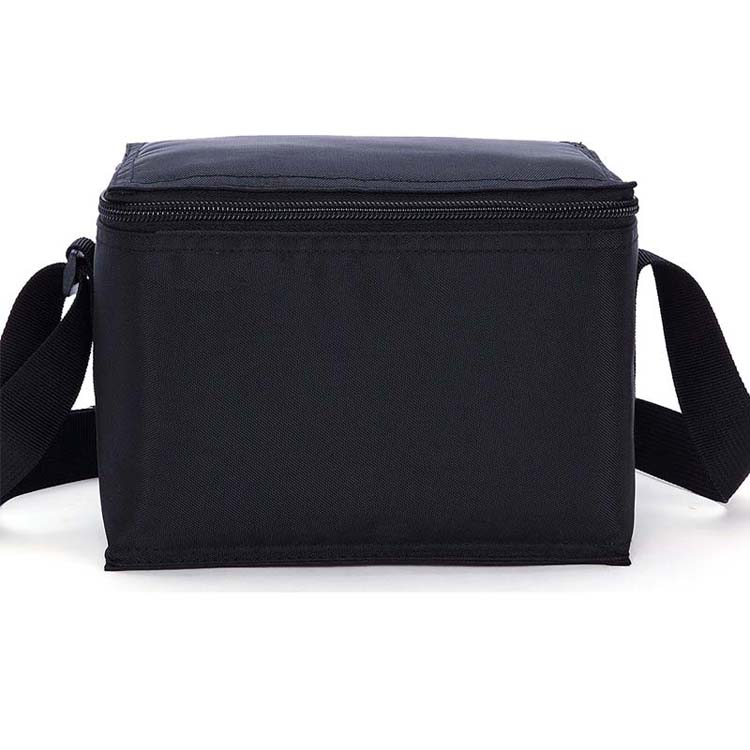 hot selling cheap promotional 6 can insulated beer cooler bag