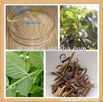 Uncariae Rhynchophyllae Extract Rhynchophylline Powder