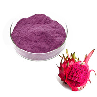 Top Quality 100% Nature Red Dragon Fruit Juice Powder