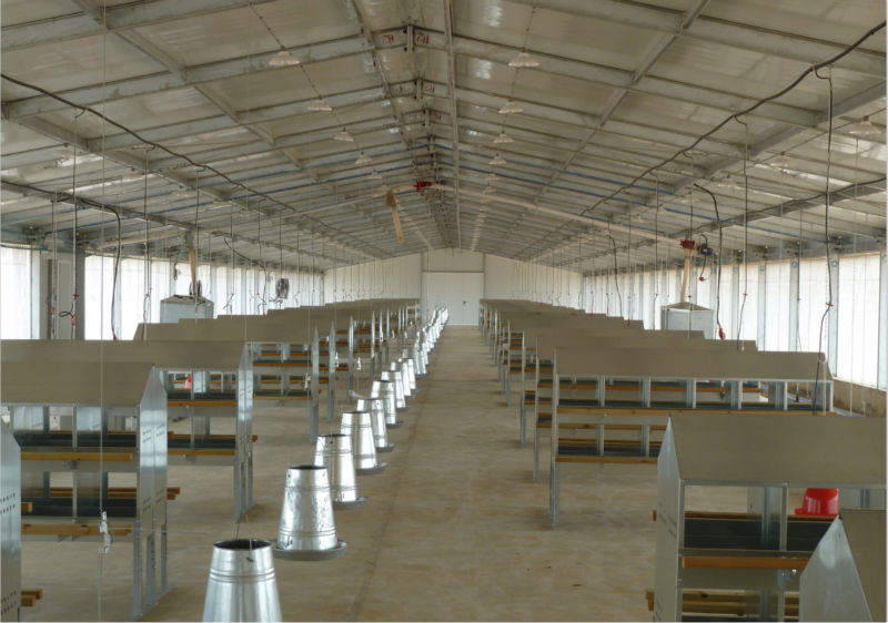 Commercial Poultry Housing Design 28 Images Broiler