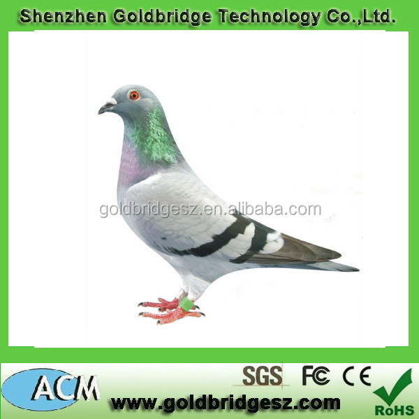 High quality designer Uuhf Rfid Tags For Pigeon Racing