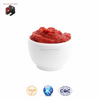 Canned 70g 210g 400g 800g 850g 2200g tomato paste