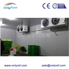 commercial vegetable refrigerator, vegetables cold storage