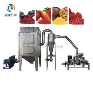 Stainless steel fruit powder making machine/fruit powder processing machine/lemon powder machine