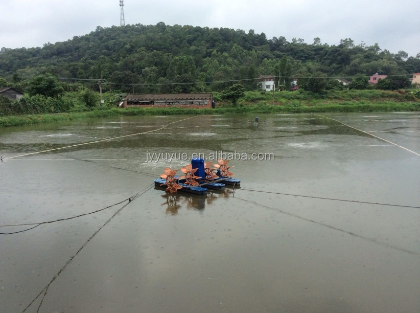 Semi intensive fish farming