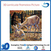 3D Plastic Picture with Lenticular Printing of Wild Animal