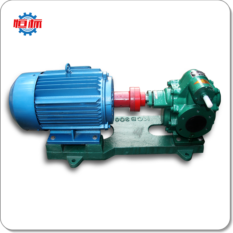 Hengbiao brand cast iron gear oil pump stainless steel rotary pump copper gear price