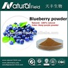 OEM Welcome Natural fruit and vegetable dehydrated food dried blueberries powder