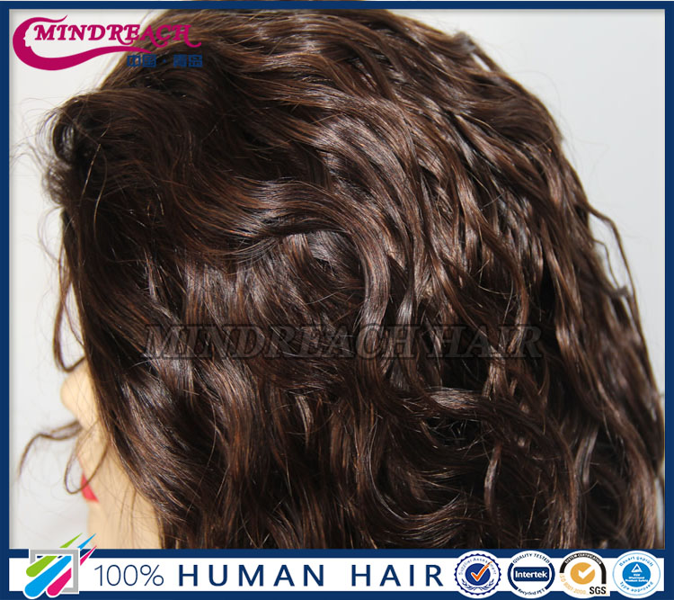 2016 hot sale Premier wigs human hair full lace wig top grade full lace human hair wigs for black women