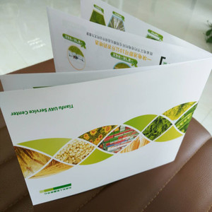 z folded flyer printing wholesale folding flyer suppliers alibaba