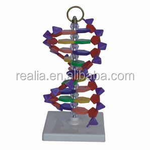 how to order dna kit