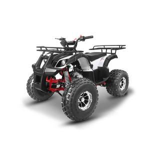 Tao Motor New Tforce Adult 125cc ATV with EPA ECE