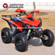 Exclusive design cool manual disc brake racing sports ATV 250cc for adult