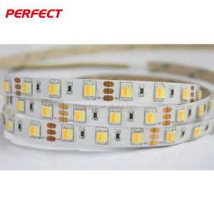 CCT adjustable strip color tunable LED Flexible strip light5050 led light strip warm white and cool white tunable