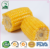 High quality soft canned sweet corn suppliers of china