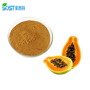 100% Natural Organic Papaya Extract / Papaya Fruit Extract Powder