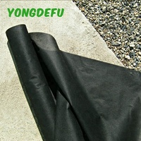 Agriculture Products Non Woven Planting Pp Spunbond Nonwoven,Pp Nonwoven Fabric Tnt