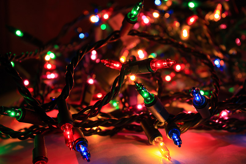 Christmas Tree Net Lights, Christmas Tree Net Lights Suppliers and ...