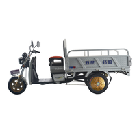 Best quality cargo loading adult electric tricycle with three wheel electric scooter