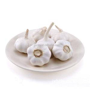Super fresh pure white garlic
