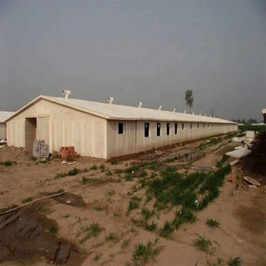 Long-span Long life Poultry Farming Chicken Farm