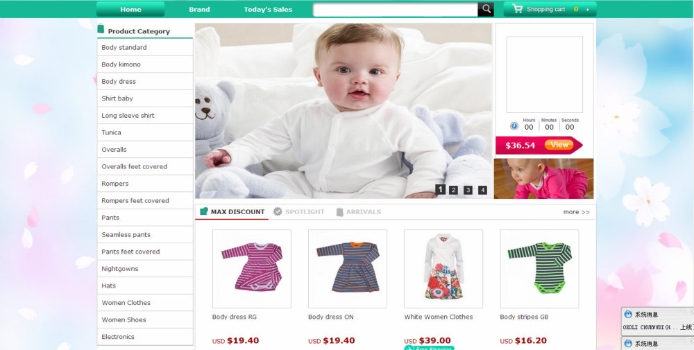 Shopping Cart Website Design,China Clothes Online Hopping Website ...