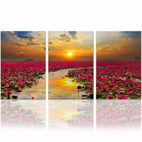 Sunrise Landscape Wall Picture Home Decor/Lotus Flower Canvas Painting/Wholesale Lake Scenery Poster Framed