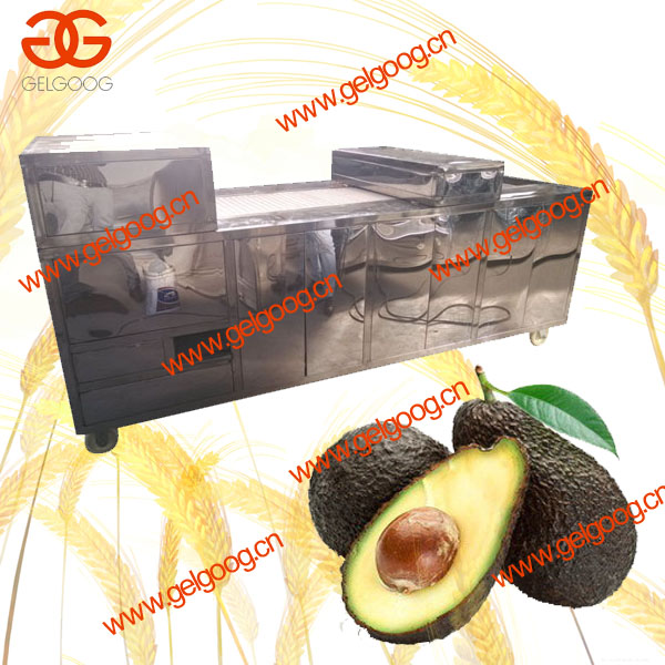 Automatic Cherry/Roxburgh Rose/Peach Pitting Machine|Dragon Eye Pitting Machine|Best Price Avocado Pitting Machine