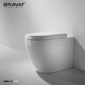 Foshan Ceramic Toilet Bowl