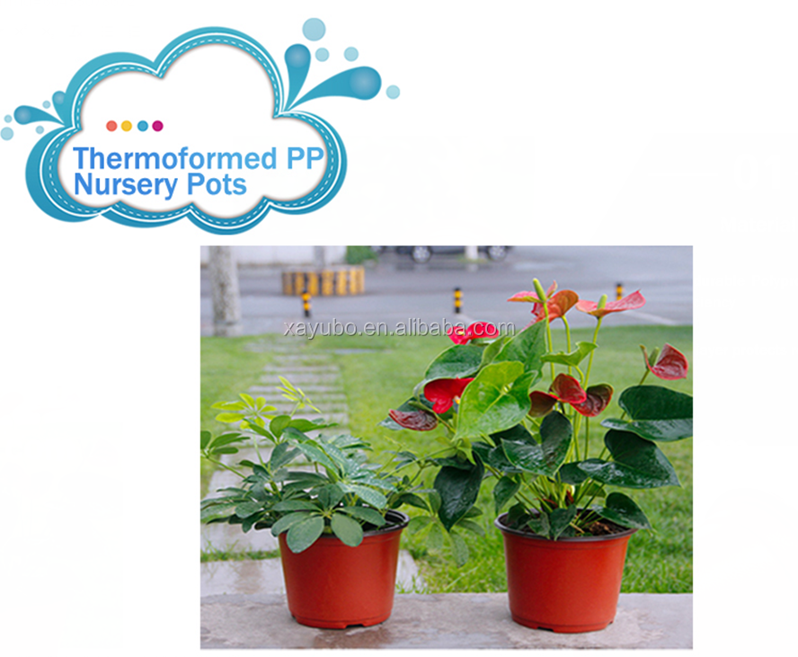 Double Colour Lightweifht Flower pot Plastic Plant Pots