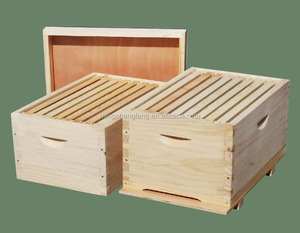 Beekeeping Hive on sales or 10 frames Wooden Bee Hive or Bee Hive Tool
