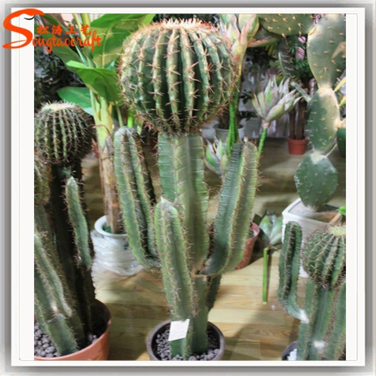 Wholesale Garden Supplies All Types Of Cactus Names Plants Artificial  Cactus Tree For Indoor - Buy Artificial Cactus Tree,Cactus Plant Names,All  Types