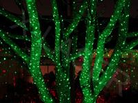 Ip65 Green Moving Garden Laser,Holiday Lights,Christmas Lights,Elf ...