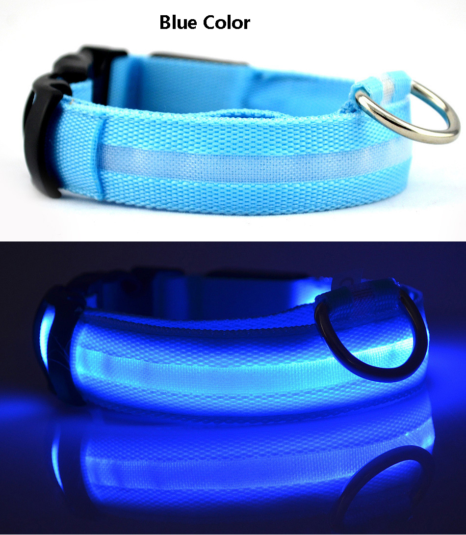 up product orange led collar light blaze pinkblazelitup international group pet energizer dog
