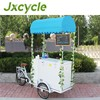 Mobile freezer container cargo 3 wheel motorized bike
