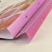 High quality 2O/2D ring binder a4 file folder custom printing 2 hole file folder