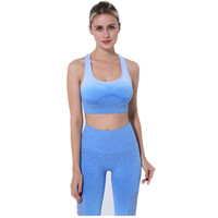 Custom 2Pcs Women New Yoga Sets Fitness Bra+Pants Leggings Set Gym Workout Sexy Sports Wear Quick Dry Leggings Running Clothing