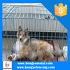2015 Wholesale Stainless Steel Pet Dog Cages