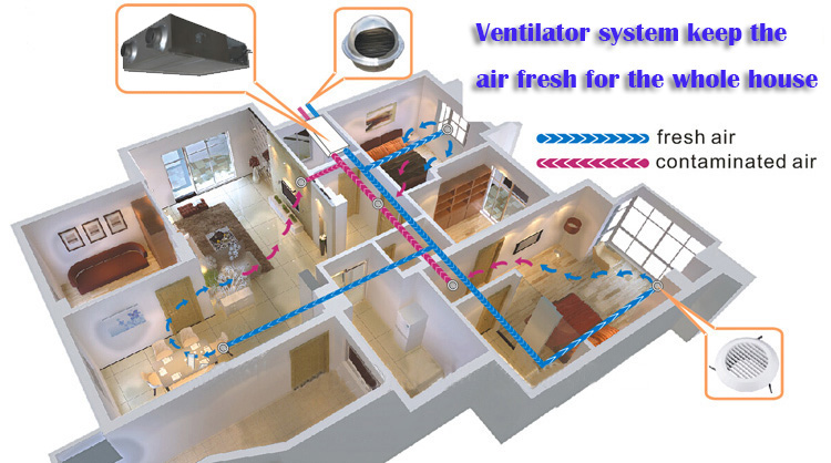 Home mechanical air slim design ERV HRV  heat energy recovery exhaust ventilation system price