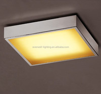 discount price acrylic white modern design ceiling light in stock