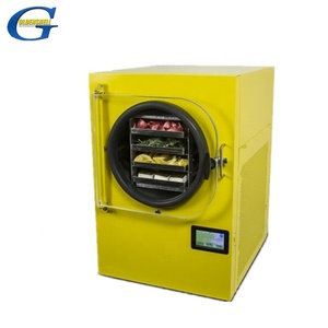 freeze drying equipment line for home use mini food freeze drying machine  freeze dried products